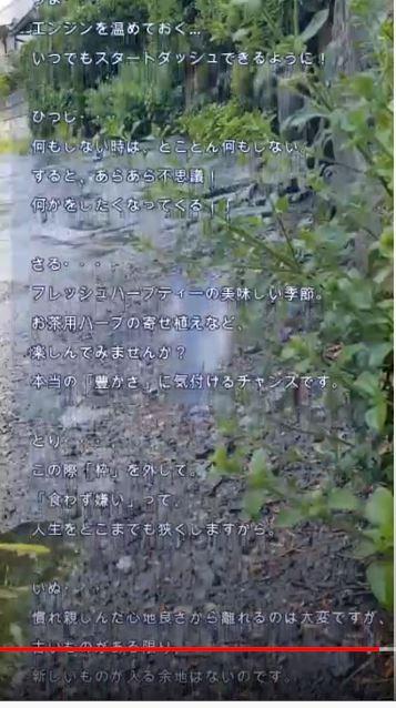 mihosugata_yukinoderukotoba_202005